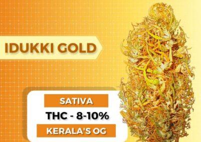 Idukki Gold Weed Strain