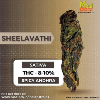 Sheelavathi Weed
