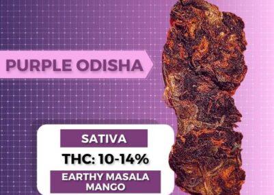 Odisha Weed Strain
