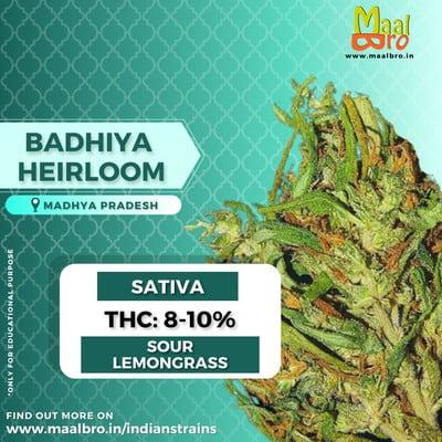 badhiya village madhya praesh weed